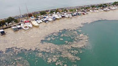 Photo of Turkey says it will defeat 'sea snot' outbreak in Marmara Sea