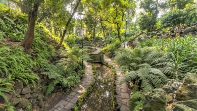 Photo of Melbourne's secret gardens and green spaces