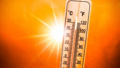 Photo of Southeast Europe heat wave seen as among worst in decades