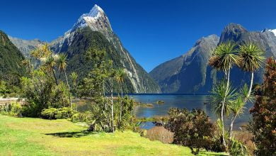 Photo of Study: The best place to ride out a global societal collapse is New Zealand